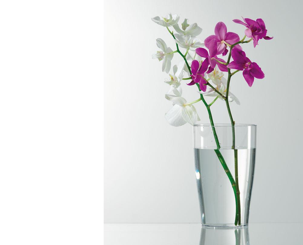 Verdeesvida un vaso transparente para las orqu deas - Maceta para orquidea ...